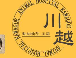 川越動物病院