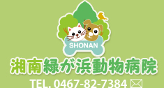 湘南緑が浜動物病院
