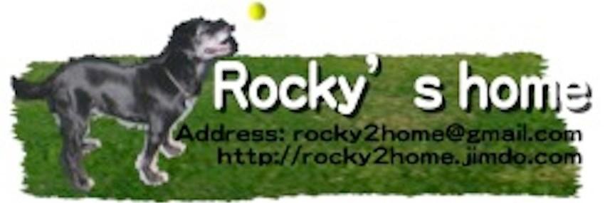 犬の介護士 Rocky's home