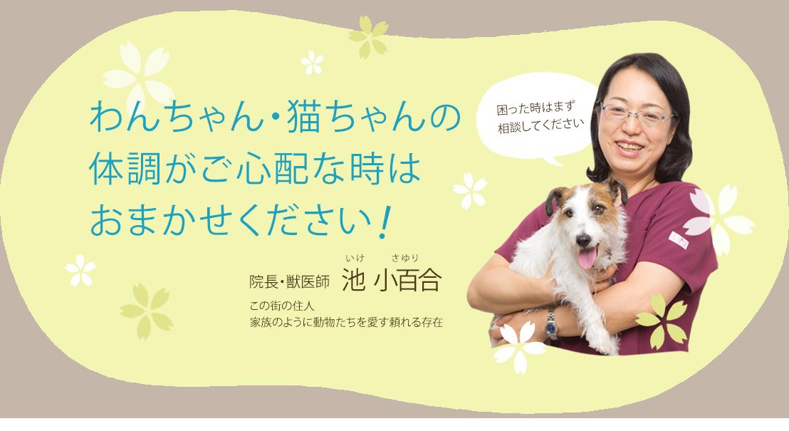 成瀬川動物病院